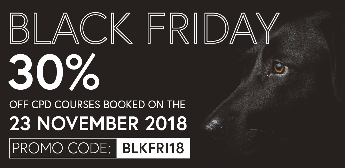 Black Friday course deals!