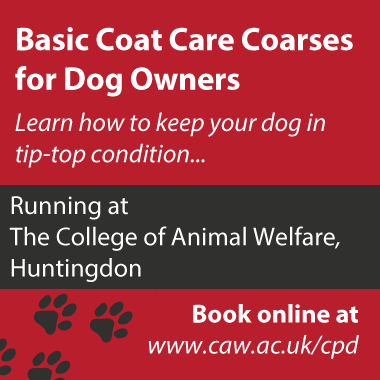 Grooming - Coat care course