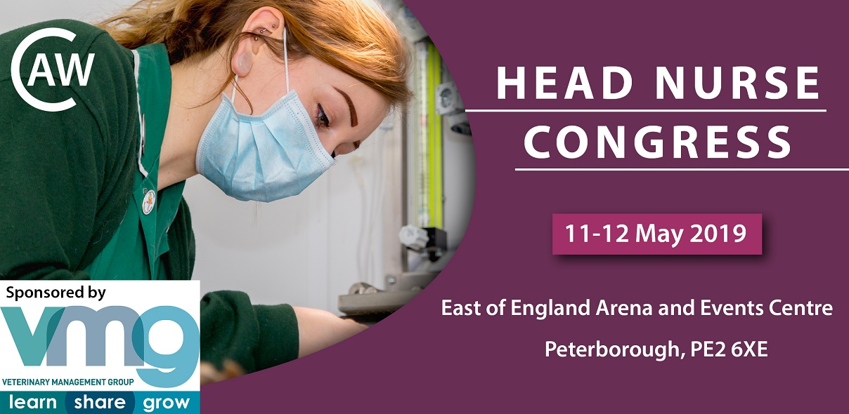 Event: Head Nurse Congress 11-12 May 2019