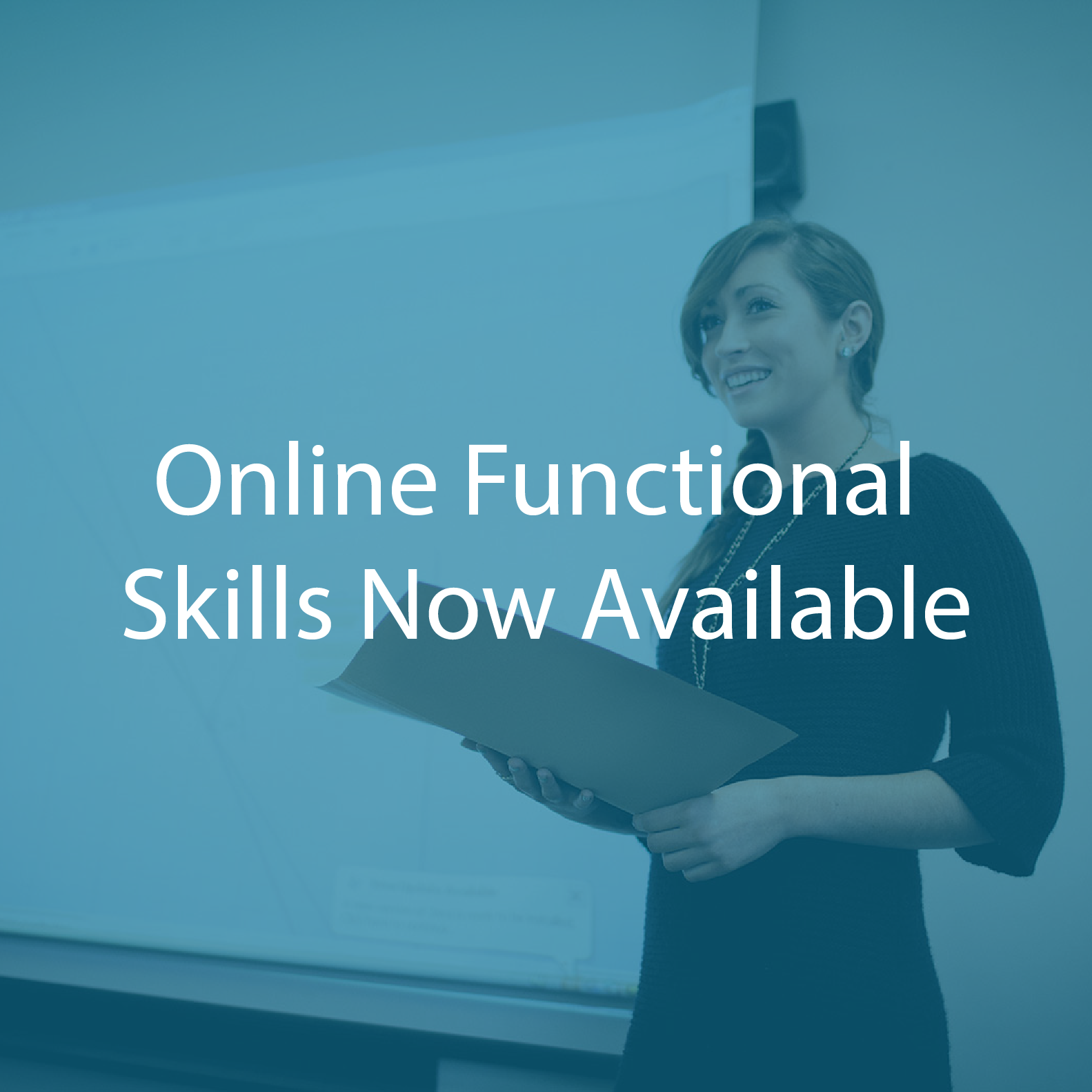 Functional Skills online course