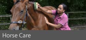 Horse Care courses