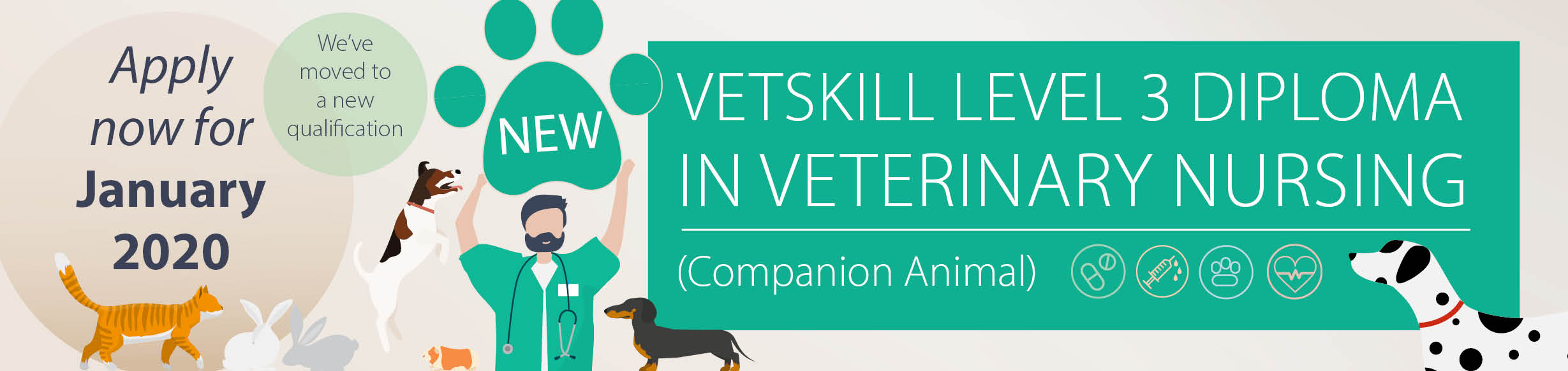 Course: VetSkill Level 3 Diploma - Companion Animal