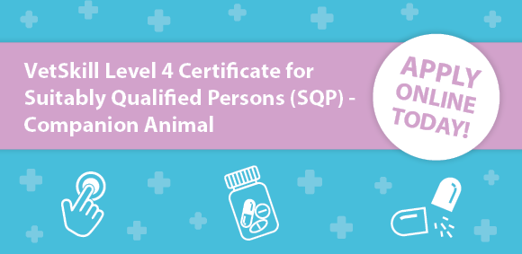 Course: VetSkill Level 4 certificate Suitably Qualified Persons (SQP) – Companion Animal