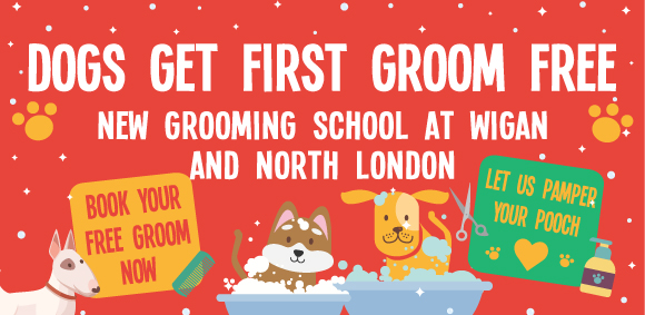 Free dog grooming in Wigan at our new College!