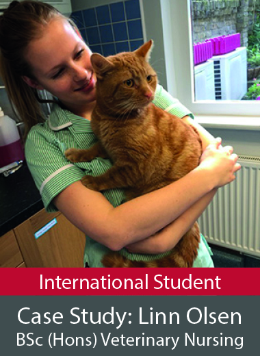 Case study BSc Honours Veterinary Nursing