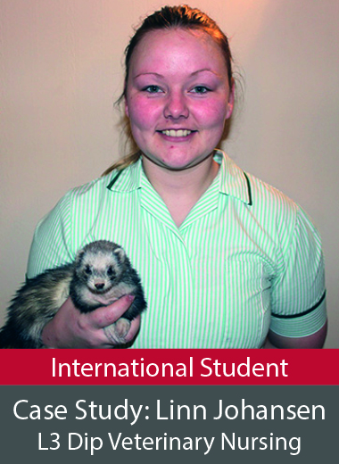 Case Study Level 3 Diploma in Veterinary Nursing International Student