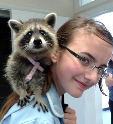 Eliza with a racoon on her shoulder