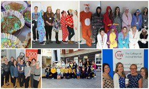 Fundraising for Children In Need
