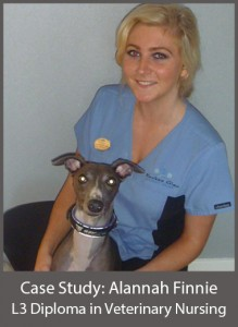 Alannah Finnie L3 Diploma in Veterinary Nursing
