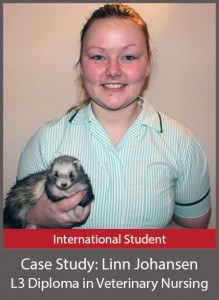 Linn Johanson Level 3 Diploma in Veterinary Nursing