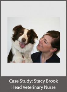 Stacy Brook Head Veterinary Nurse