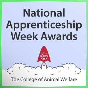 Apprenticeship-Awards-Home-Page-Image