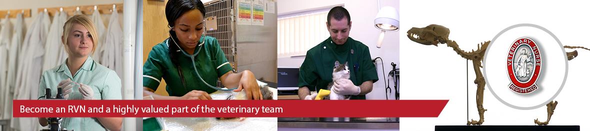 Veterinary Nursing | CAW