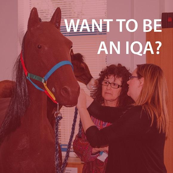 Become an IQA