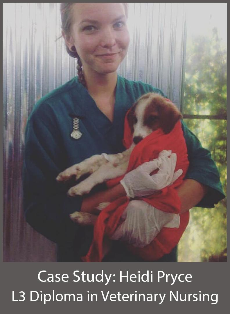 Heidi Pryce L3 Diploma in Veterinary Nursing