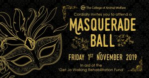 charity masquerade ball advertisement