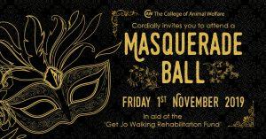 charity masquerade ball advertisement