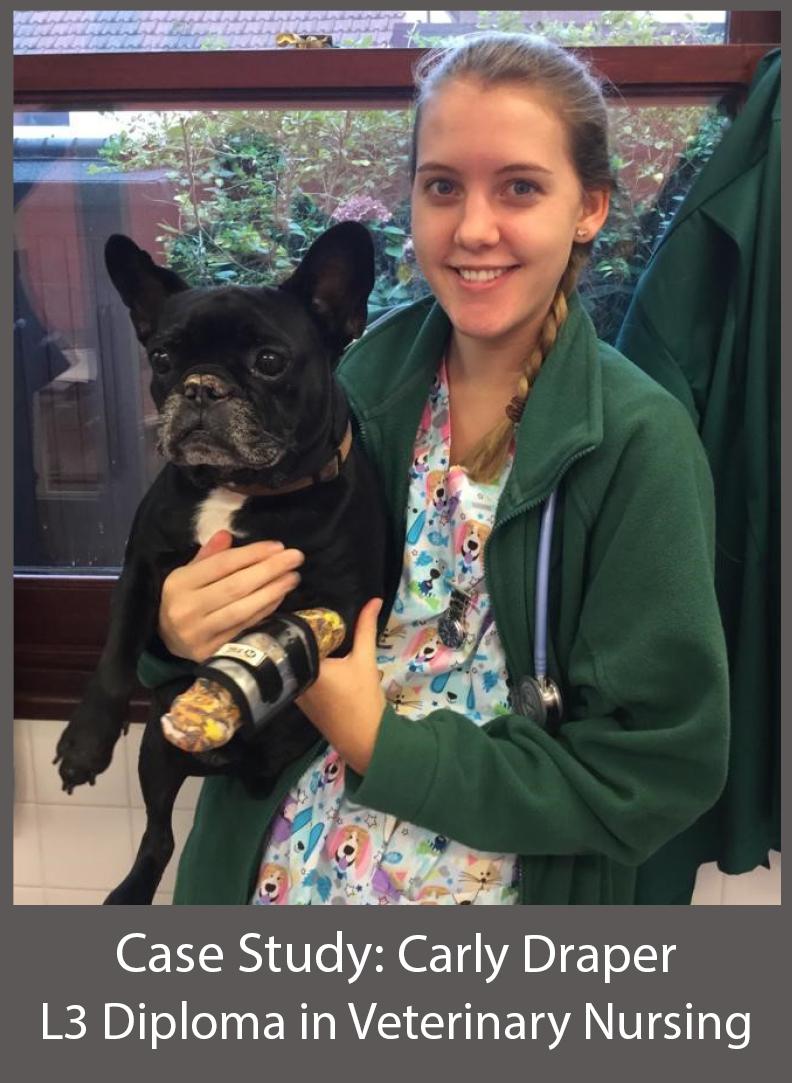 Carly Draper L3 Diploma in Veterinary Nursing