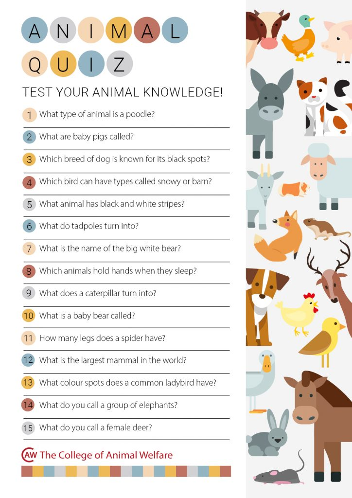 Animal Themed Quiz