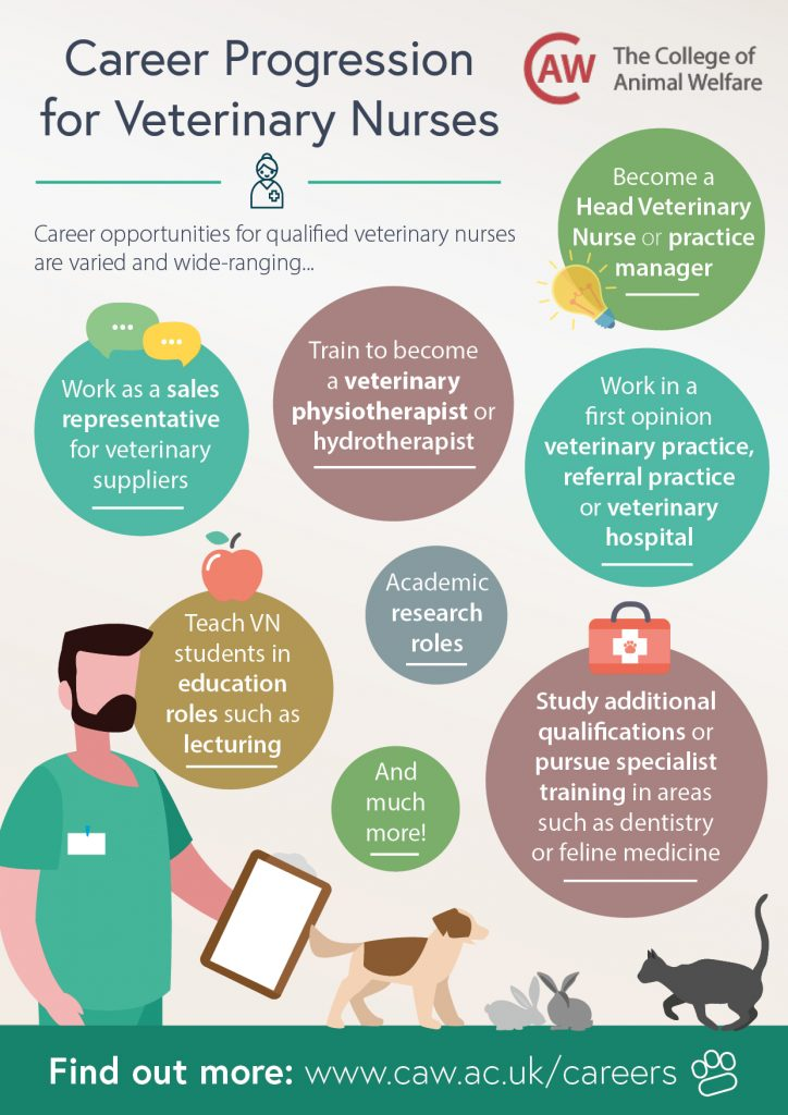 Career Progression for Veterinary Nurses Poster