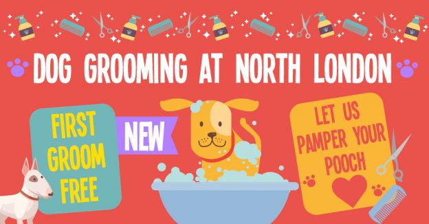 Dog Grooming Services North London CAW Image