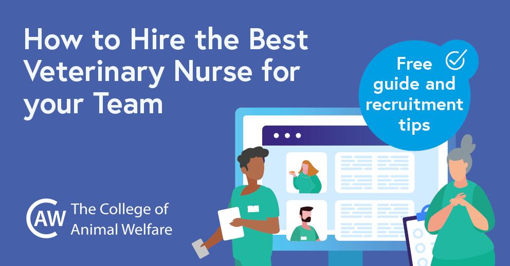 Veterinary Nurse Recruitment Guide