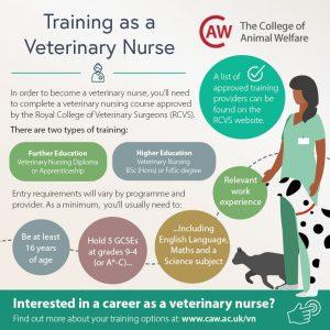 How to become a Veterinary Nurse Social Media Image 1