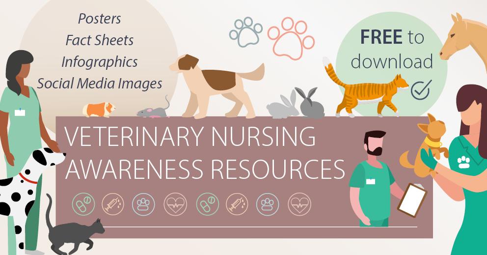 Veterinary Nursing Awareness Resources