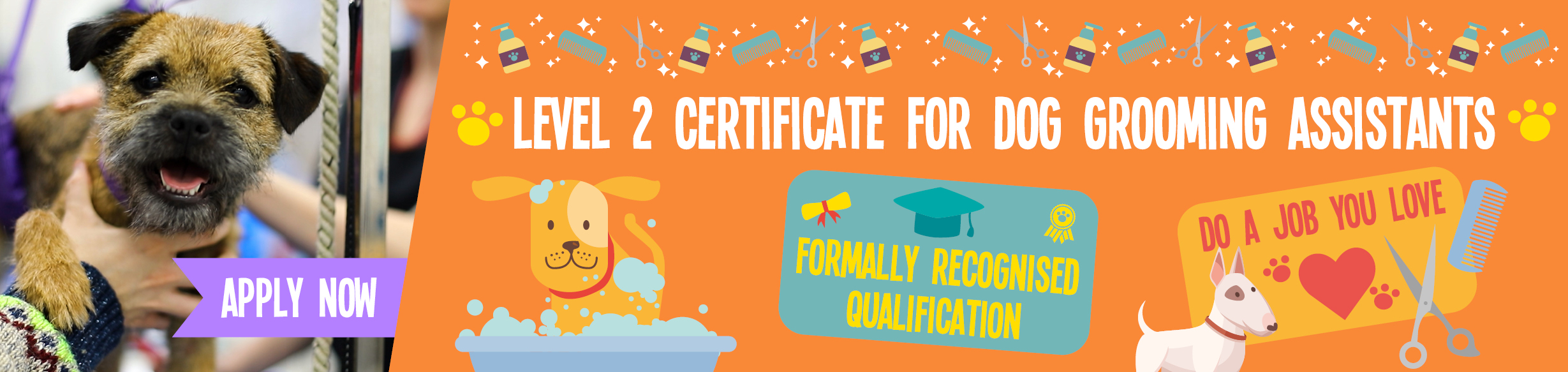Course: Level 2 Certificate for Dog Grooming Assistants