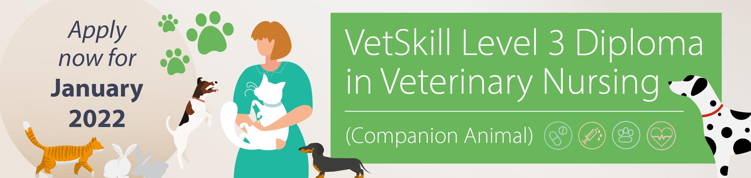 Start studying the Level 3 Diploma in Veterinary Nursing in January 2022