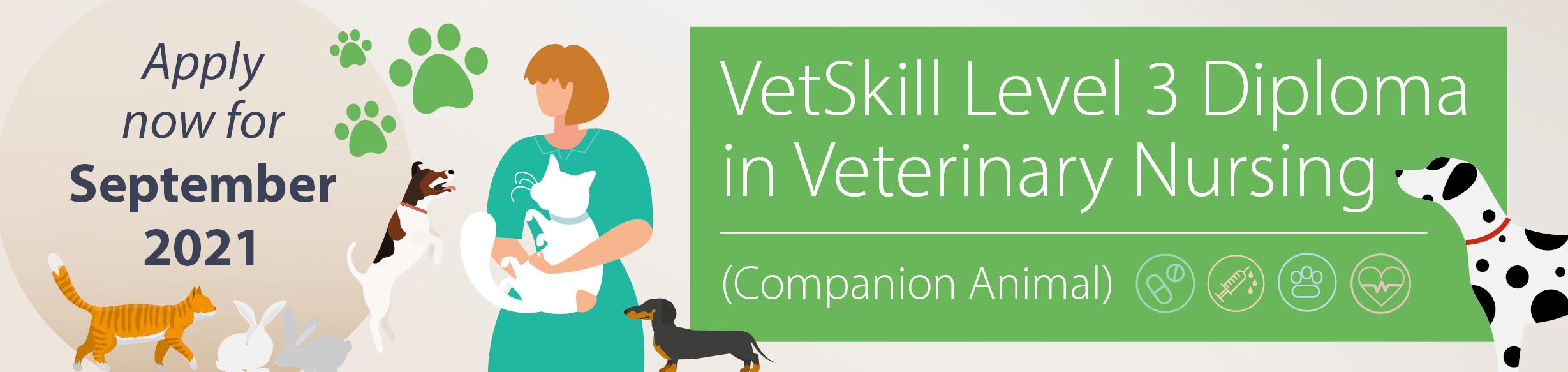 Start studying the Level 3 Diploma in Veterinary Nursing in September 2021