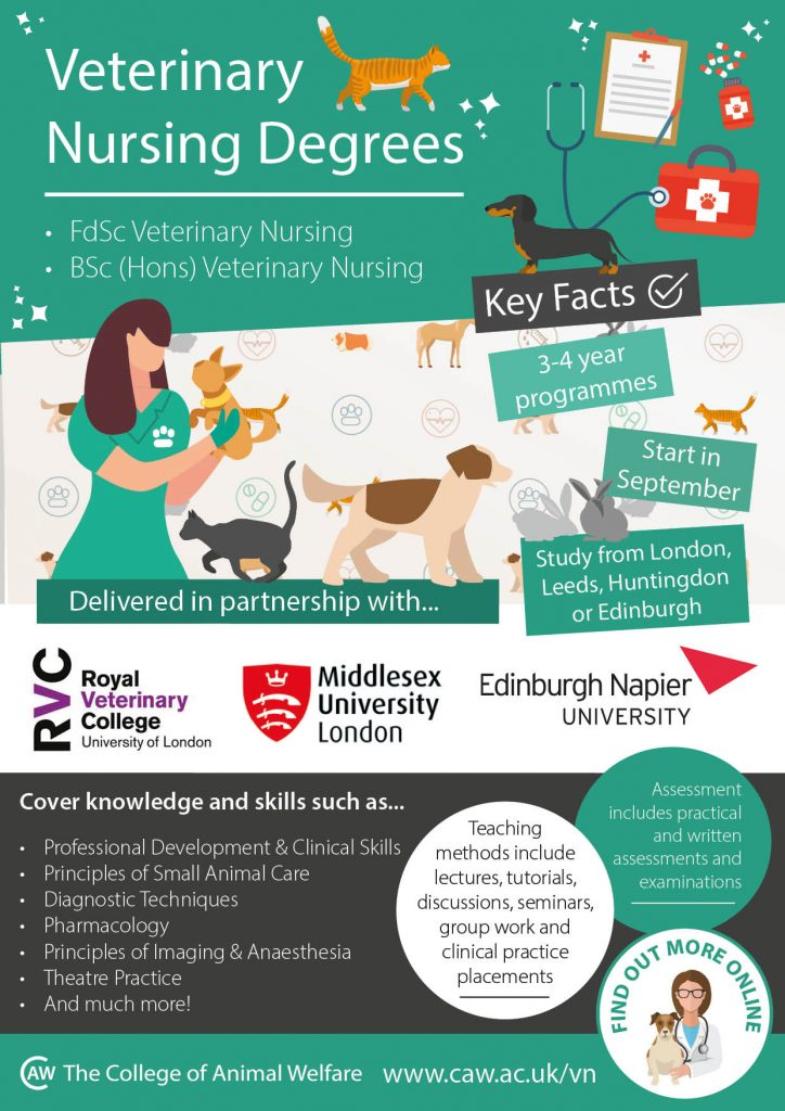CAW Veterinary Nursing Degrees Infographic