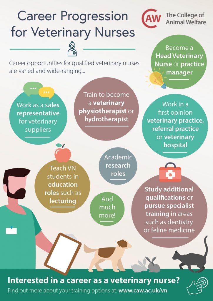 Career Progression for Veterinary Nurses Poster