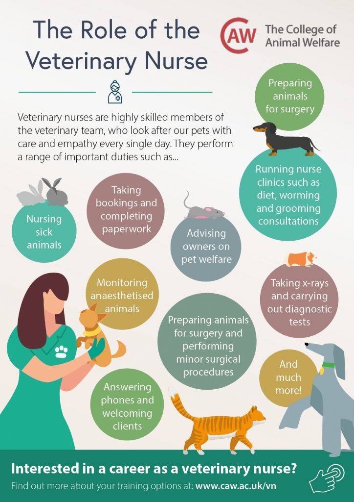 Veterinary Nursing Awareness Month VN Job Profile Poster
