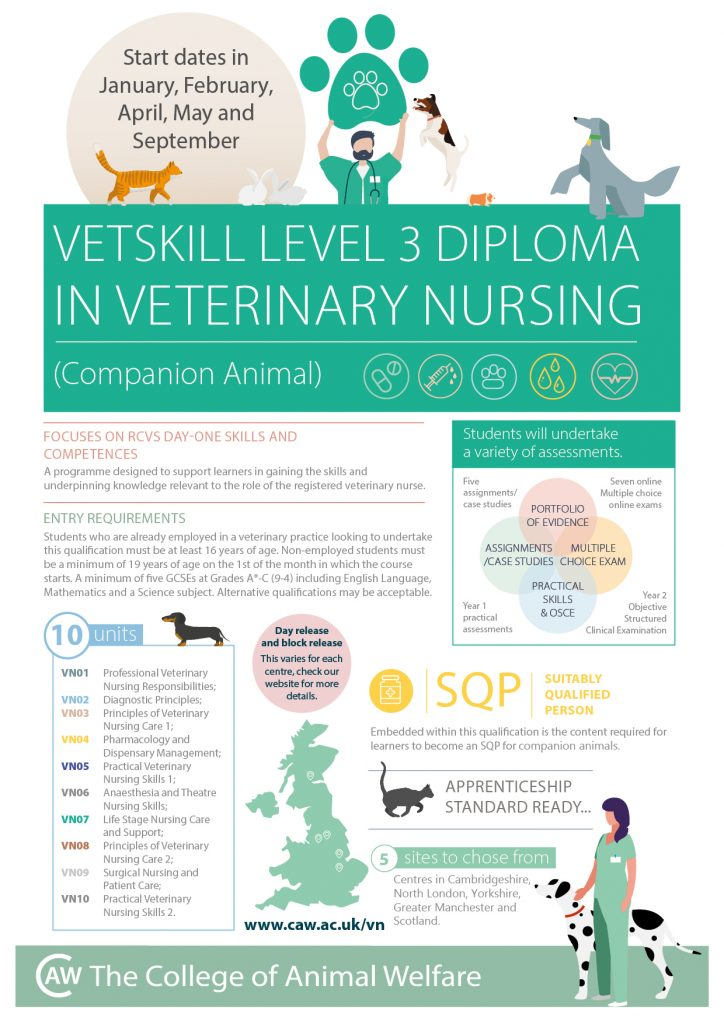 Veterinary Nursing Level 3 Infographic