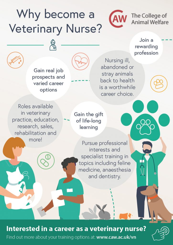 Why Become a Veterinary Nurse Poster