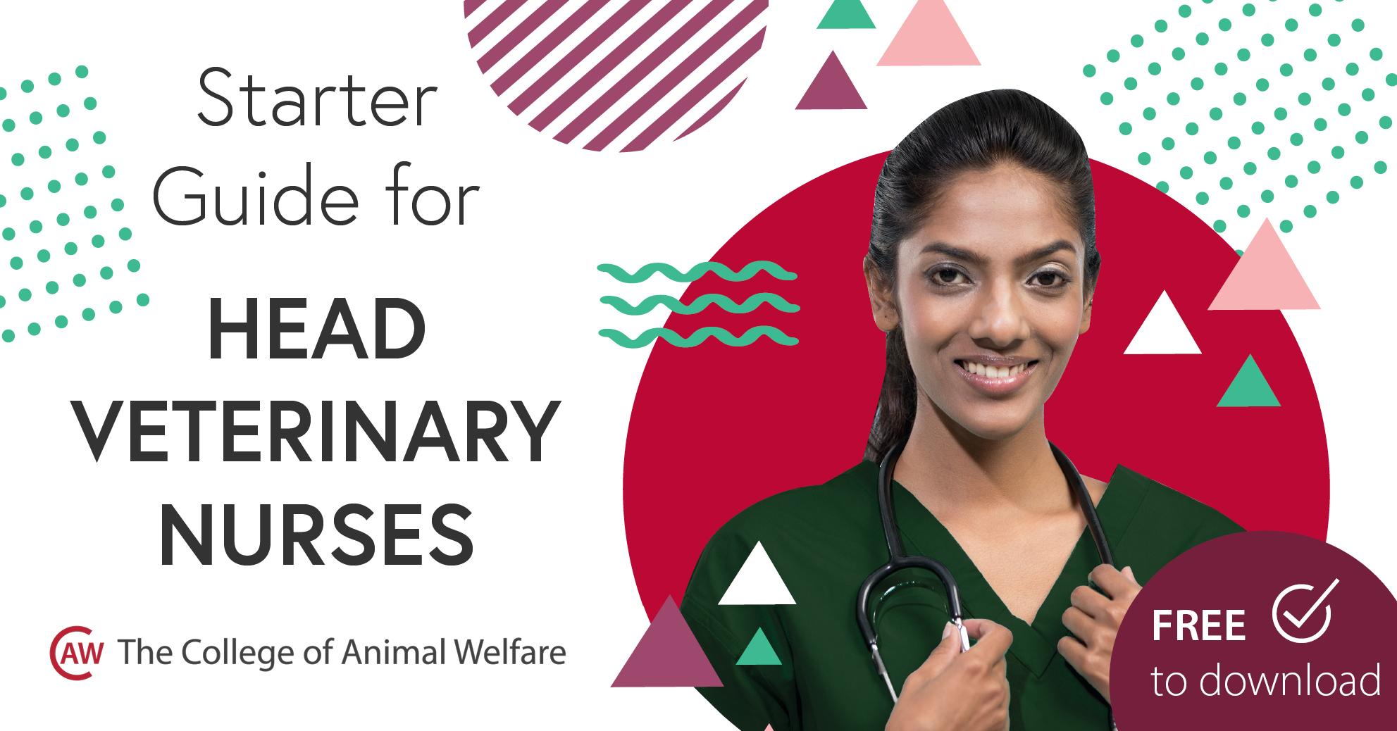 Starter Guide for Head Veterinary Nurses