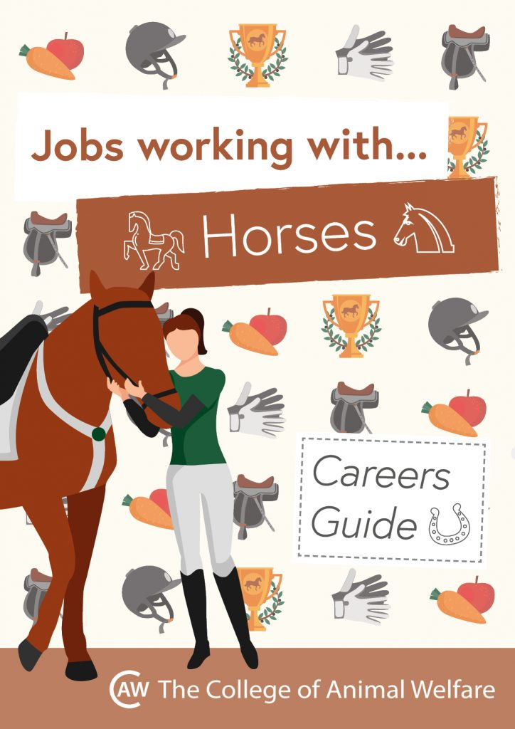 Animal career guides - Horses
