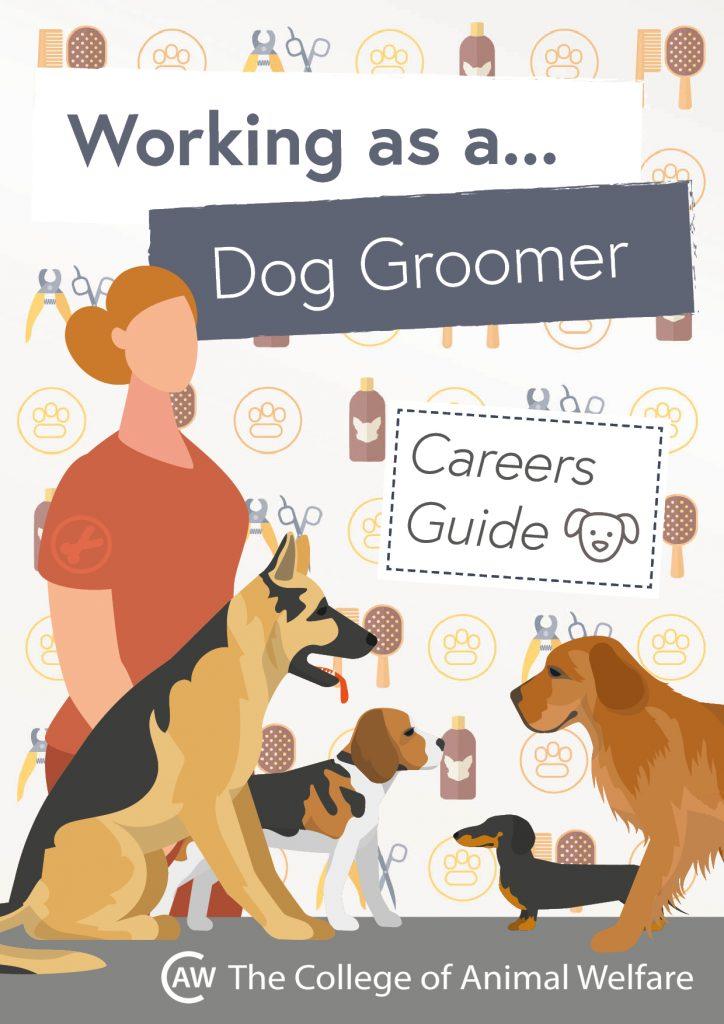 Animal career guides - Dog Groomer