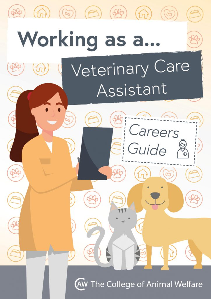 Animal career guides - Veterinary Care Assistant